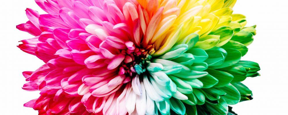 Challenge Your Own Understanding of Gender as Binary